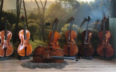 Voor het eerst een cello huren?