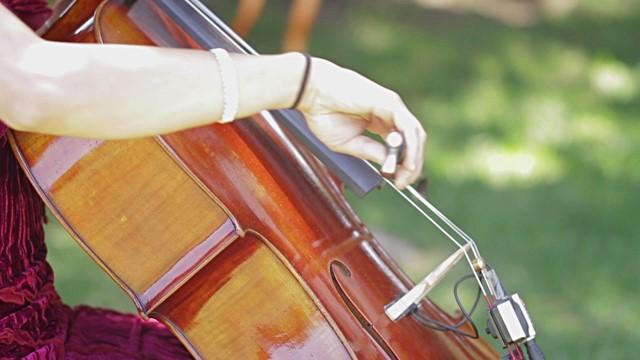 """""""Welke cello kan ik het beste huren?"""""""